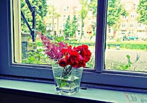 Free stock photo of arrangement, arrangement of flowers, bouquet, flowers bouquet