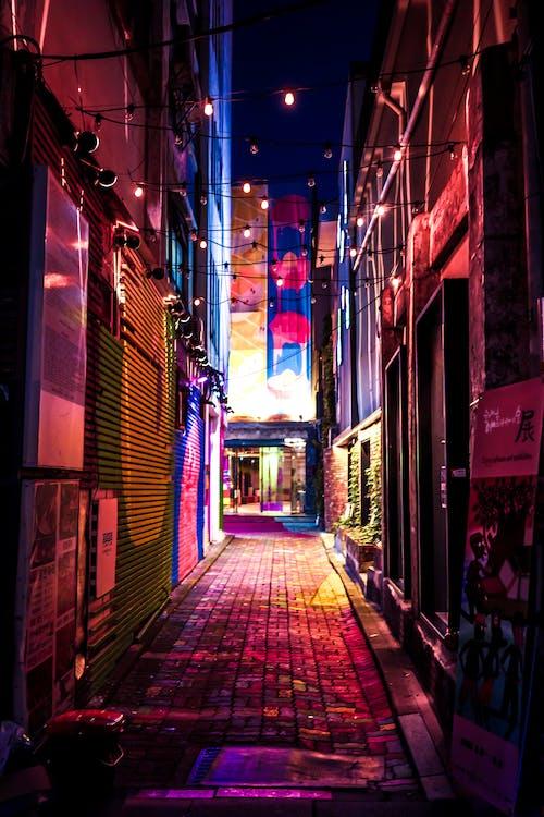 architectuur, avond, belicht
