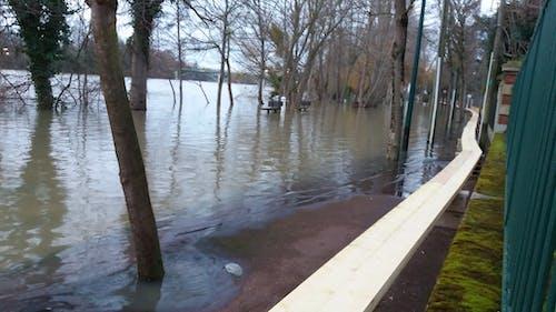 Free stock photo of Crue, flood, seine