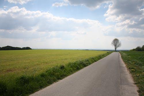 경치, 길, 잔디, 하늘의 무료 스톡 사진