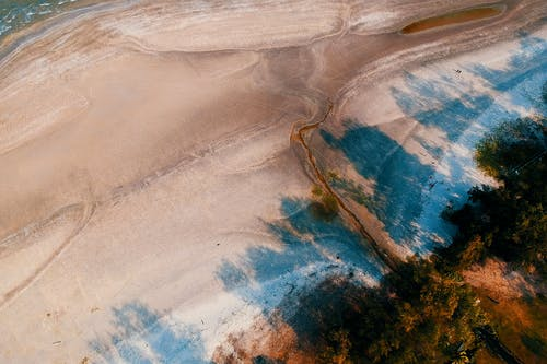 Fotos de stock gratuitas de agua, arboles, arena, colores