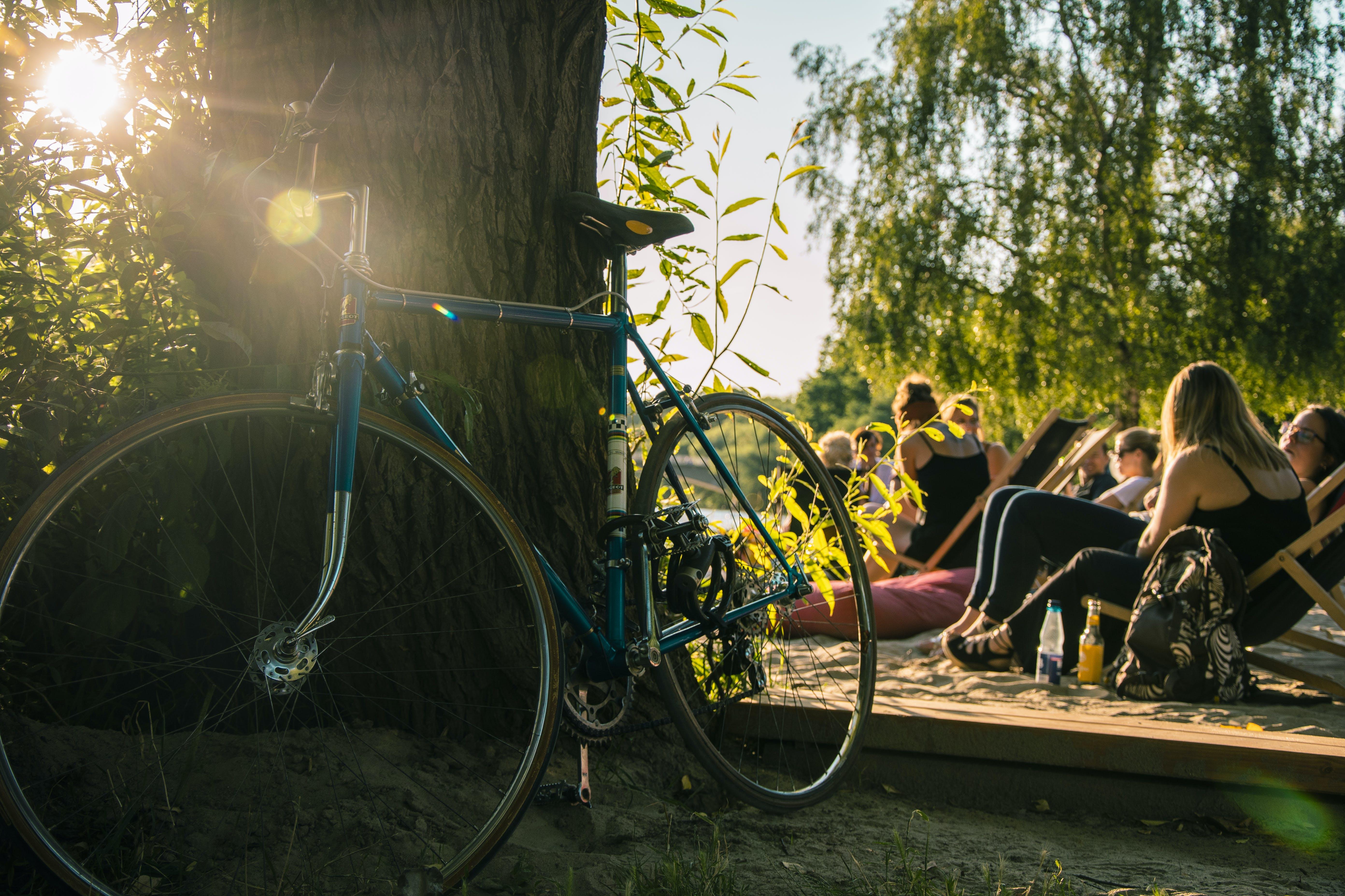 bäume, fahrrad, farben