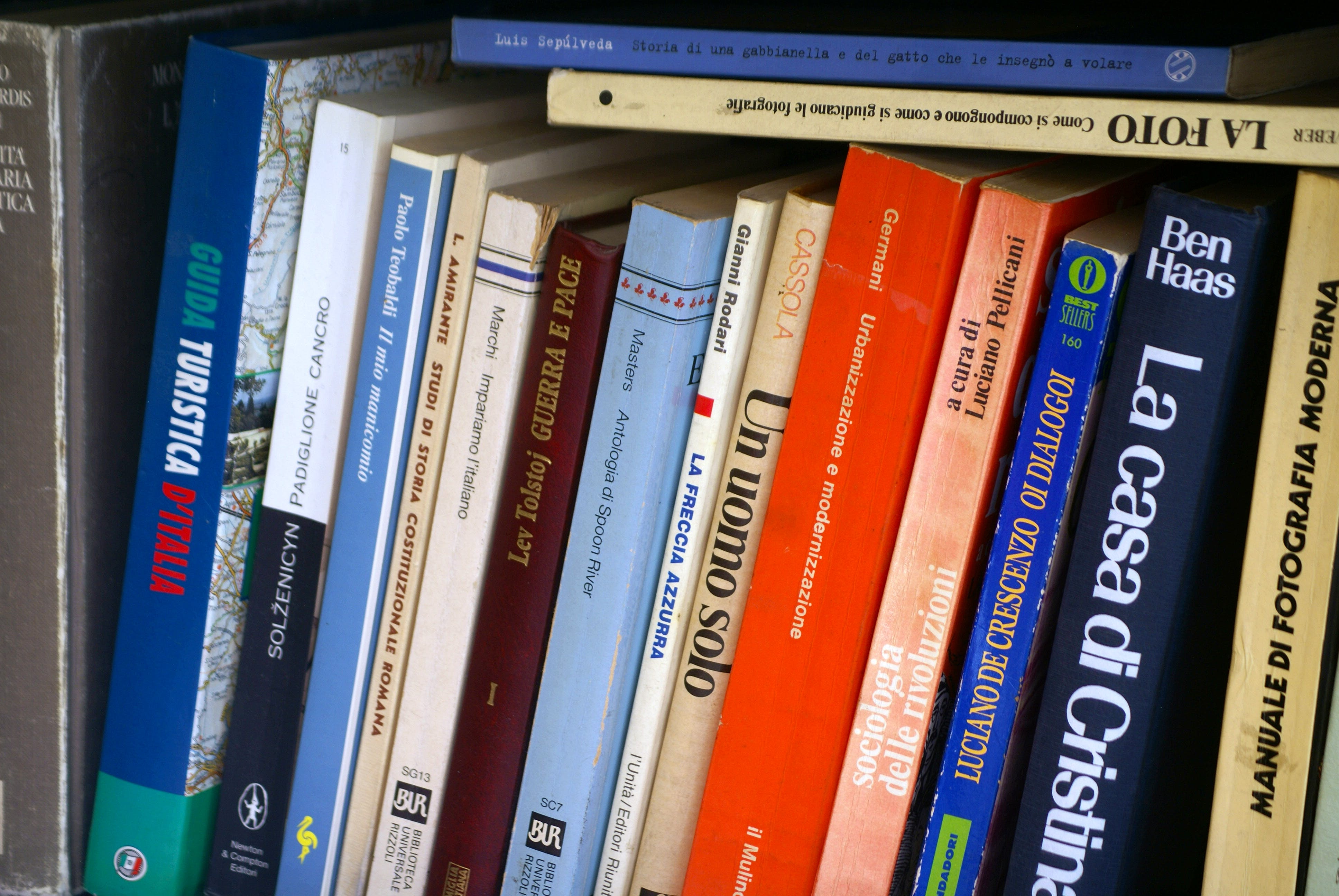 Free stock photo of book, book text, bookcase, classics