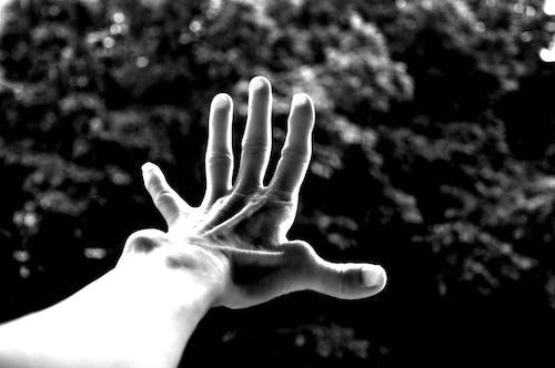 Free stock photo of arm, black-and-white, body language, body part