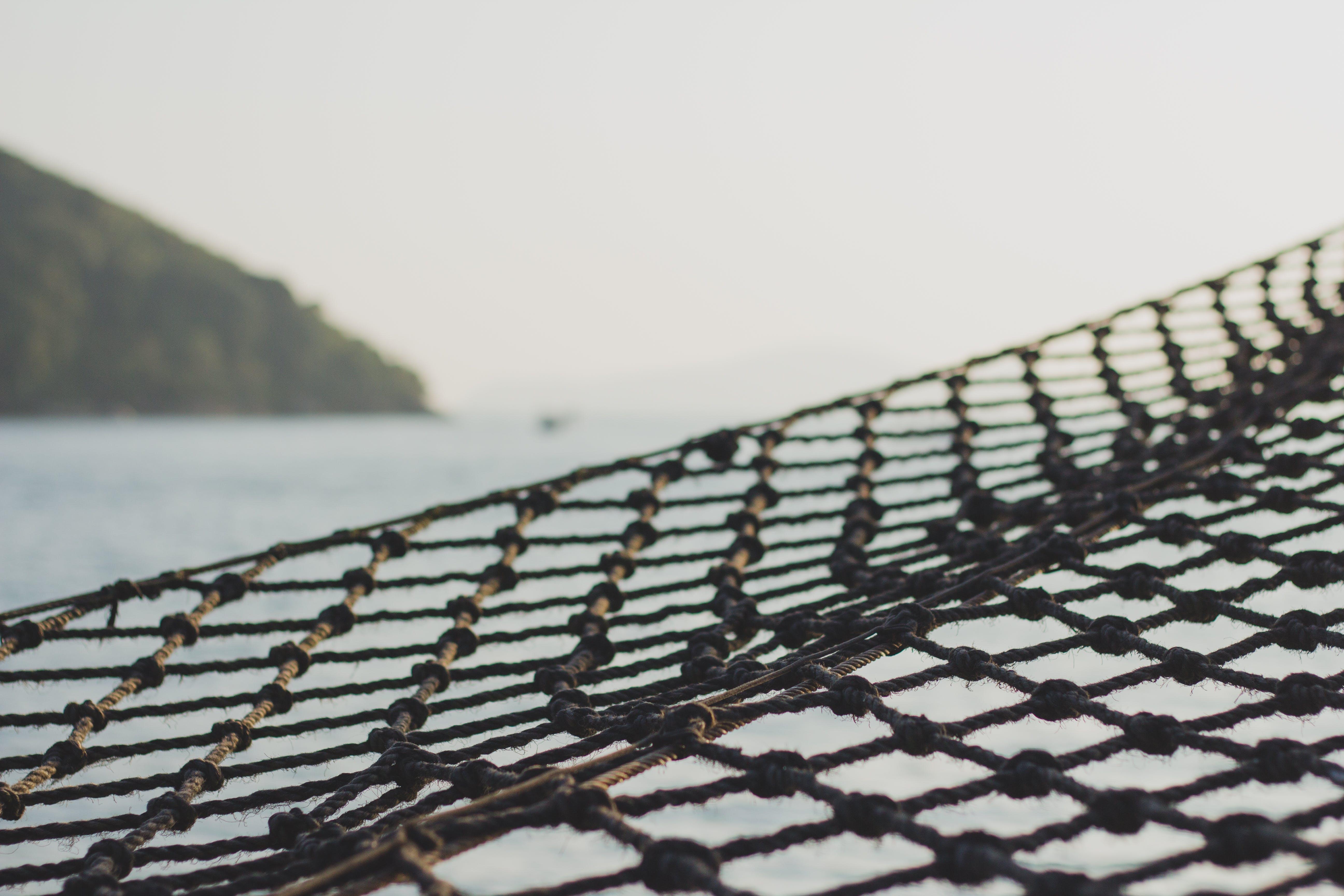 Free stock photo of sea, boat, network