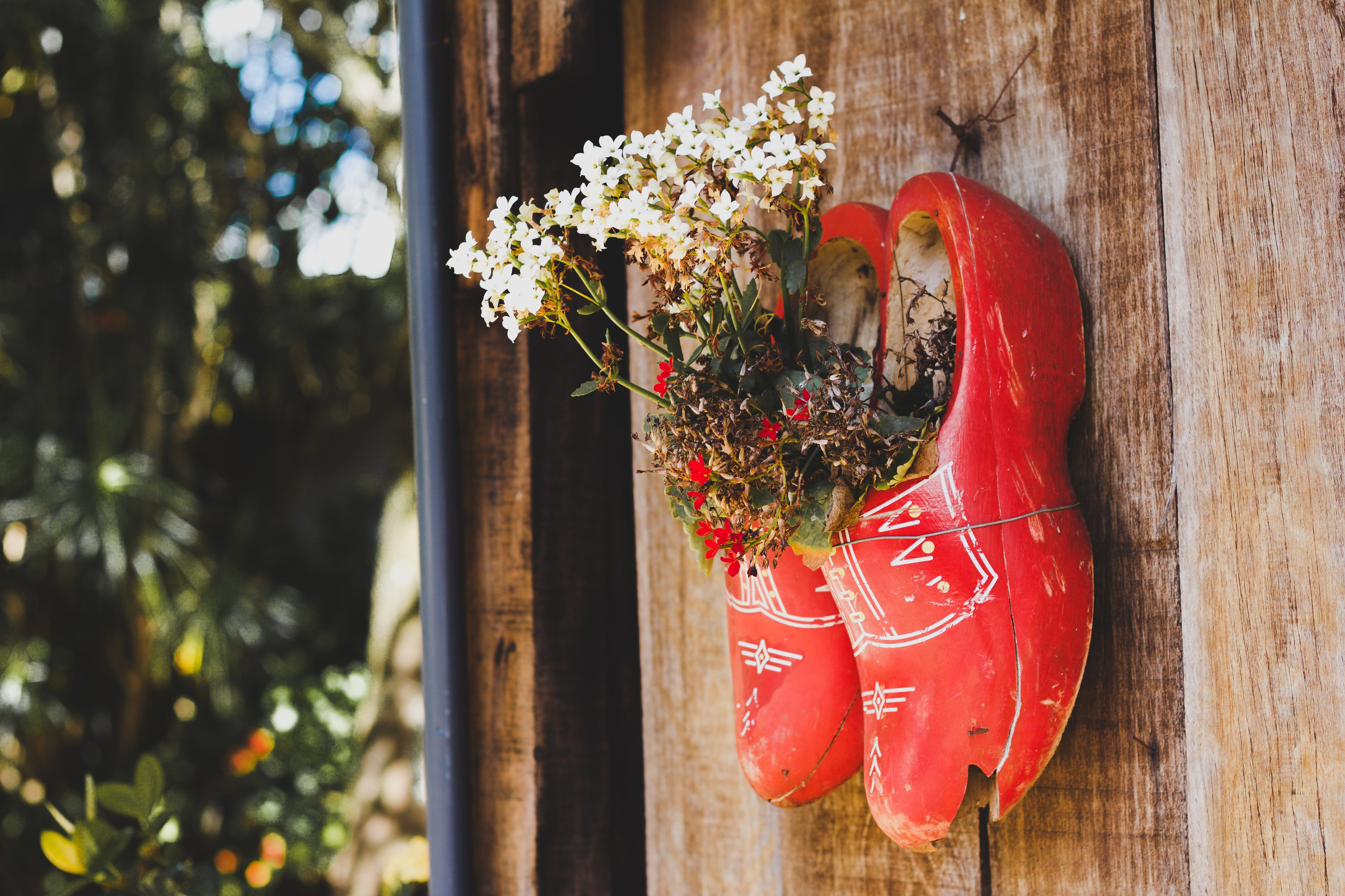Pair of Red Wooden Shoes