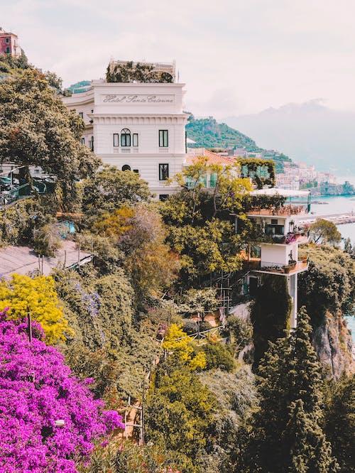 城鎮, 建造, 懸崖, 房子 的 免费素材照片