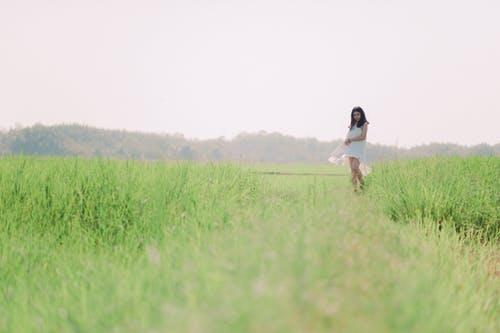 亞洲女人, 亞洲女孩, 增長, 夏天 的 免费素材照片