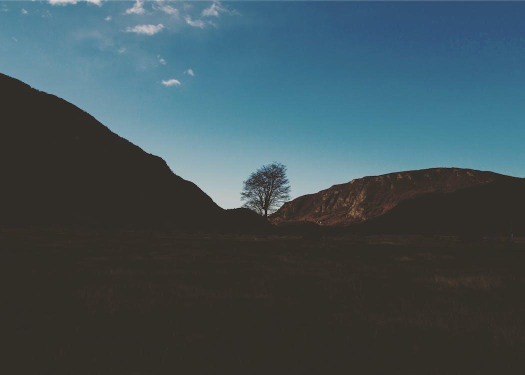 Fotobanka sbezplatnými fotkami na tému hory, krásny, nádherný