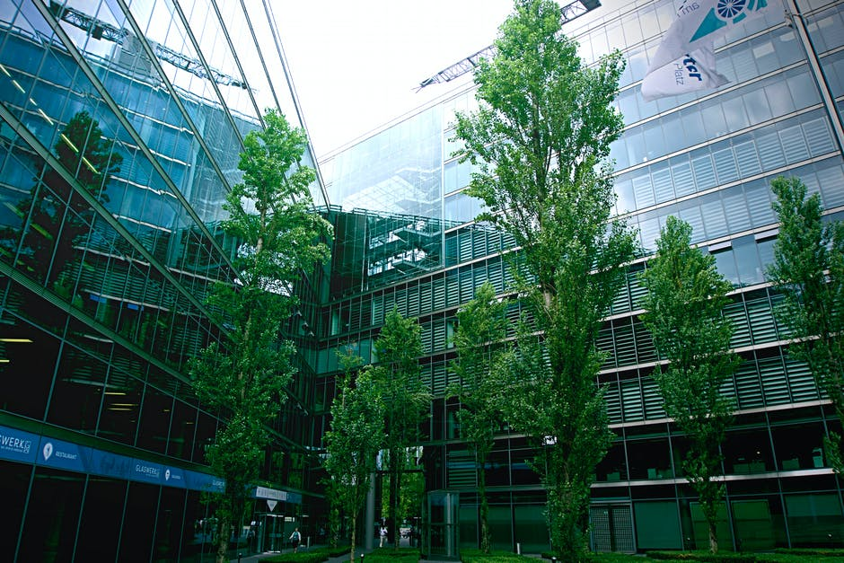 New free stock photo of building, trees, glass