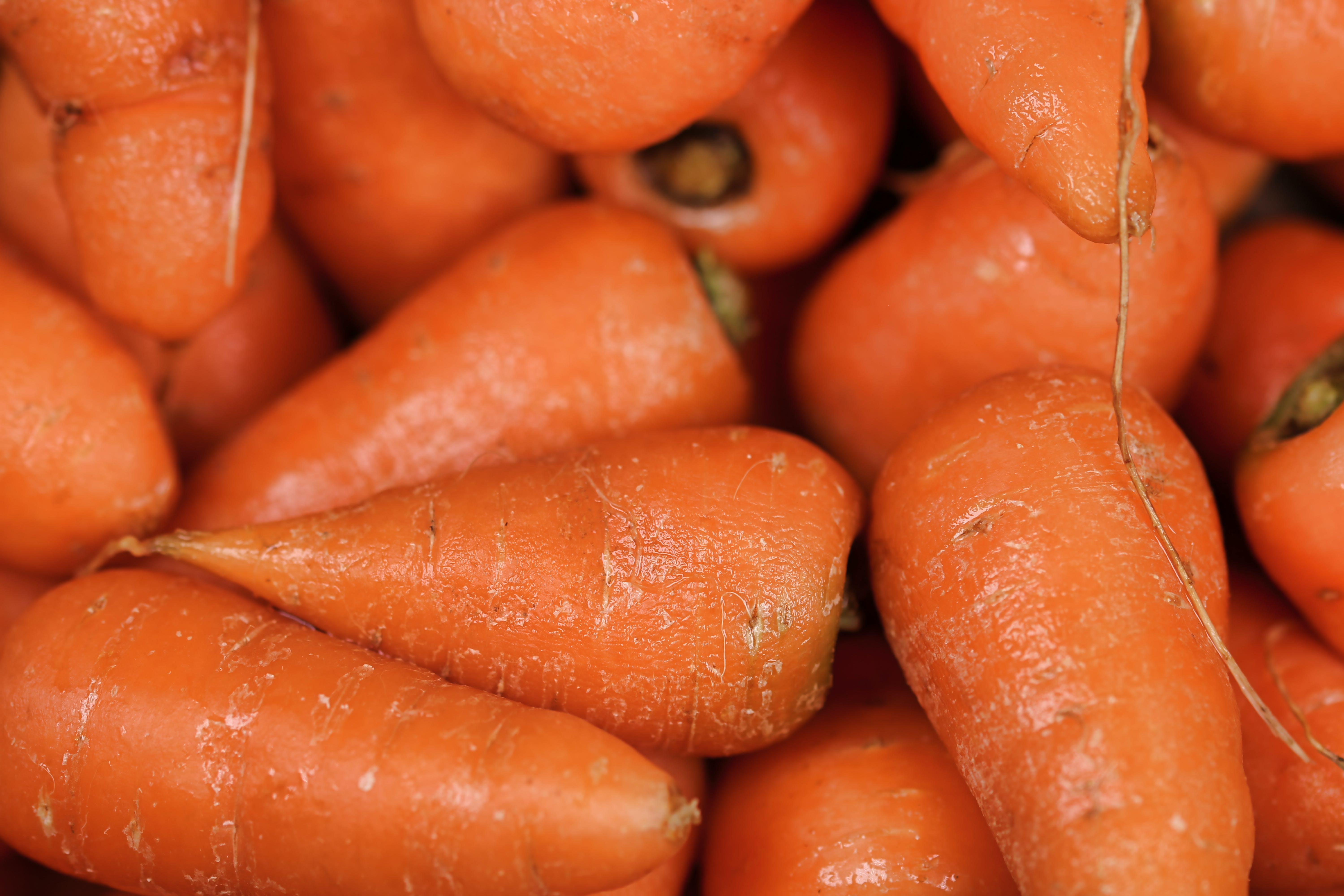 Fill the Frame Photography of Carrots