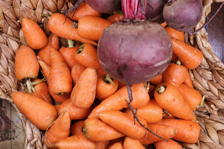 Free stock photo of orange, carrot, basket, beet