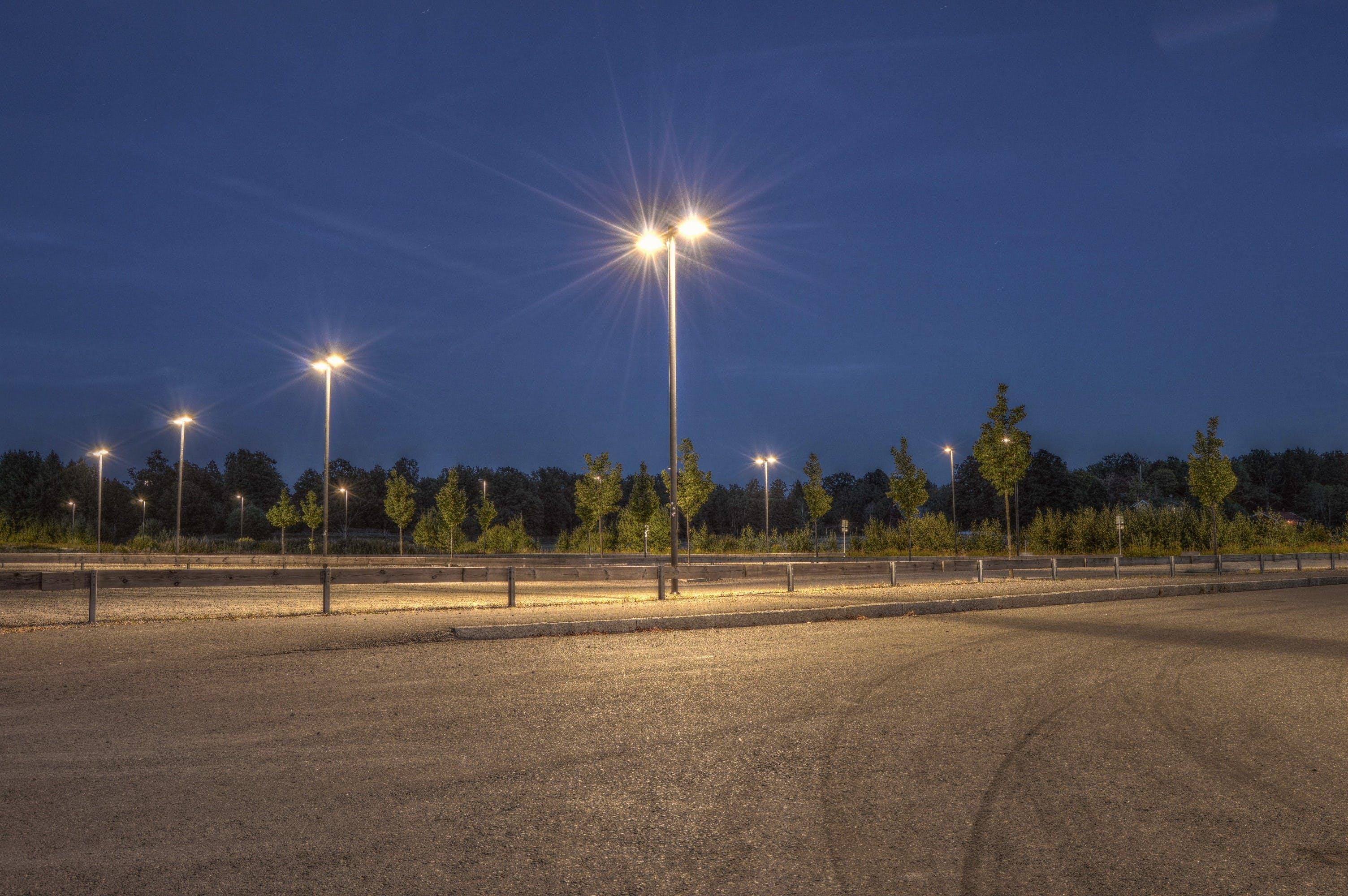 Ingyenes stockfotó éjszaka, este, fák, fények témában