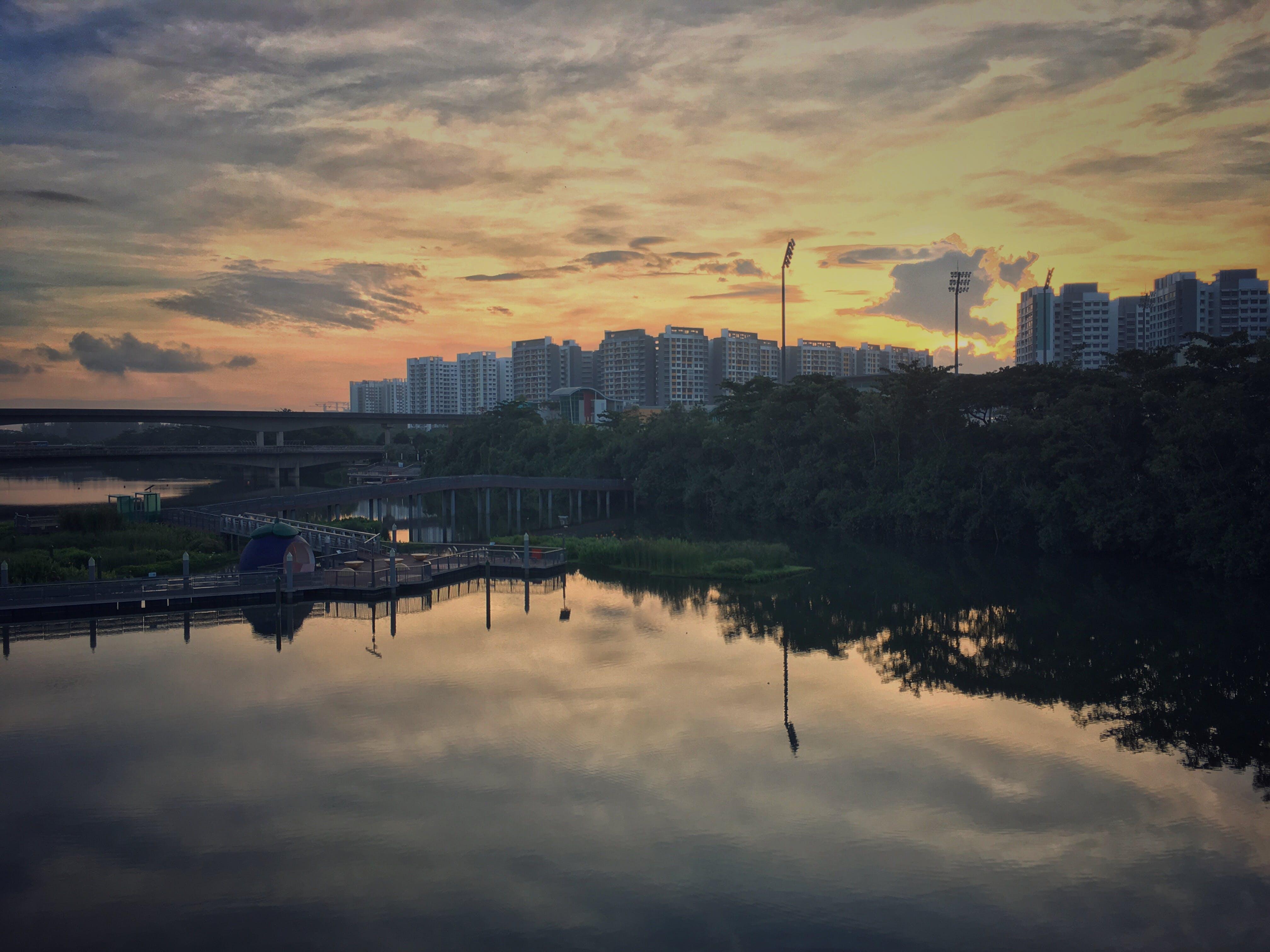 Free stock photo of Floating wetland, landscape, Riverside park, Sengkang