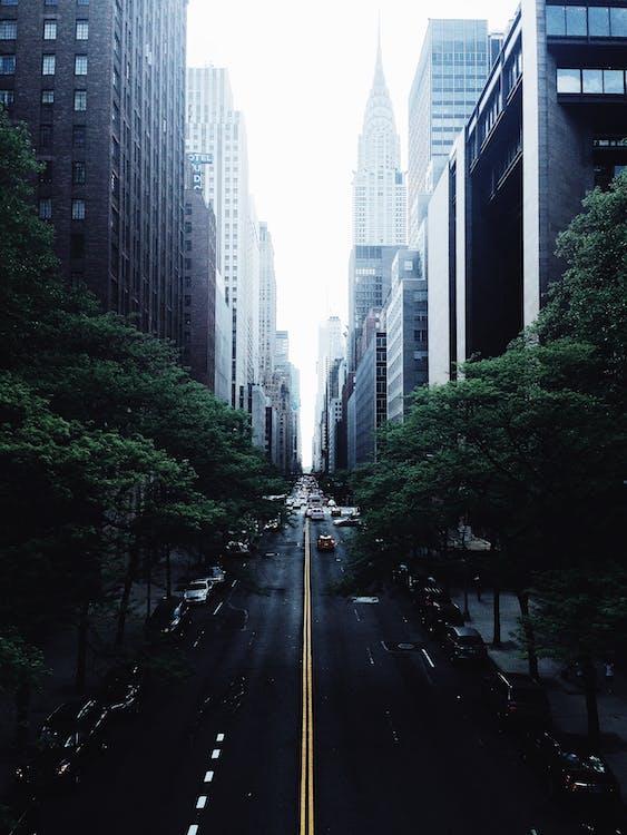 arabalar, araçlar, binalar