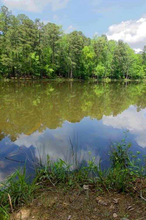 Gratis lagerfoto af lys refleksioner, natur, refleksioner, skyer