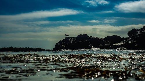 Ilmainen kuvapankkikuva tunnisteilla kivet, luonto, maisema, merenranta