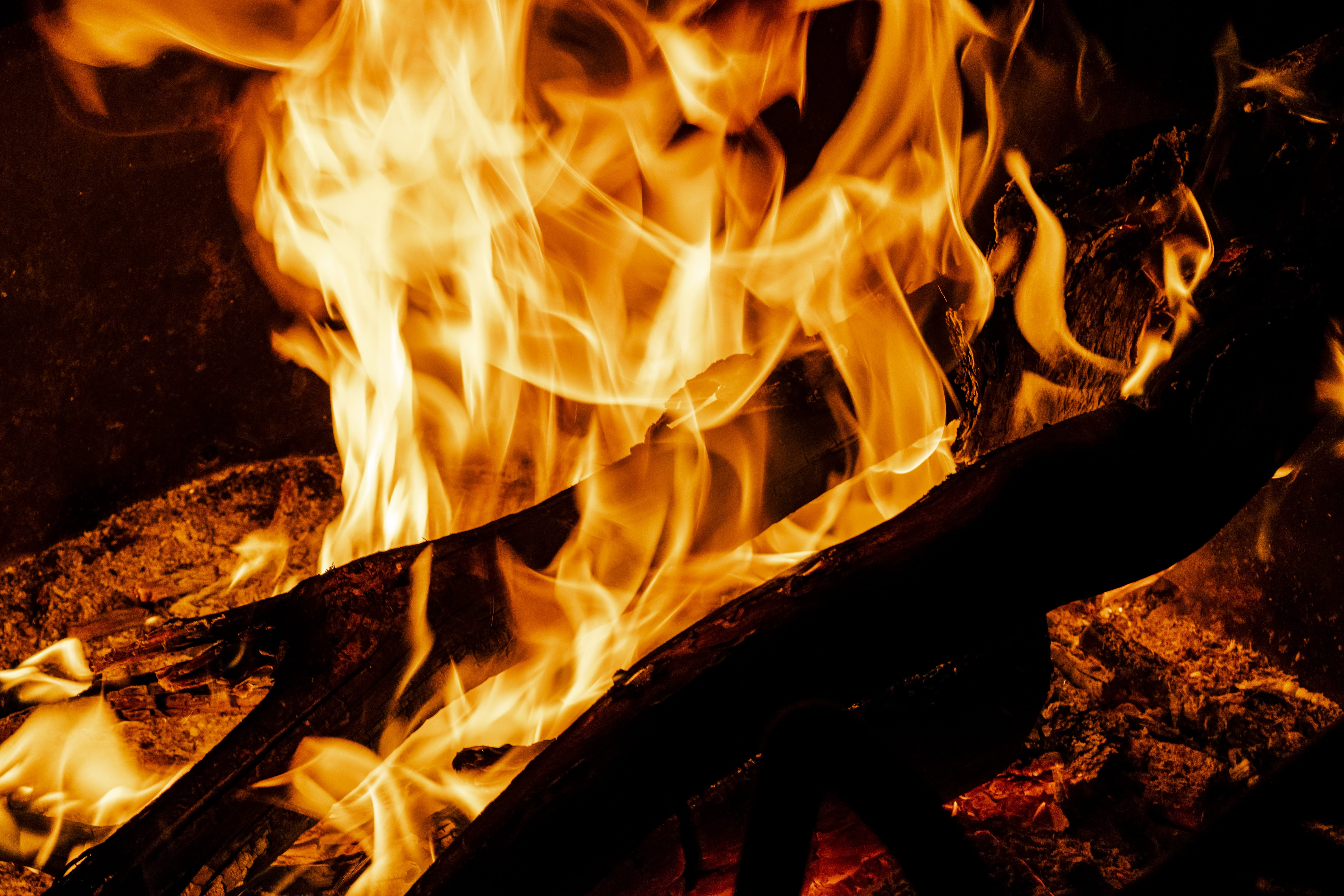 Free stock photo of bonfire, camp, camping, fire