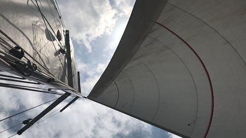 Free stock photo of sailing, sailing boat