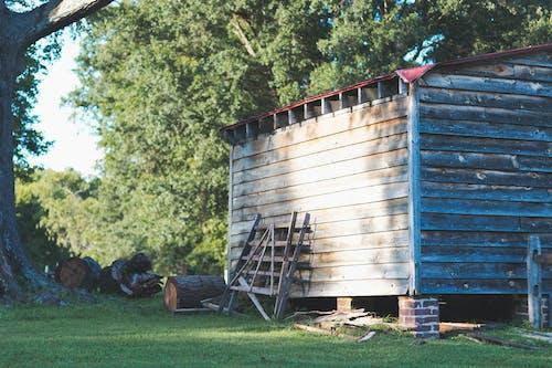 Kostenloses Stock Foto zu architektur, außerorts, bäume, baumprotokolle