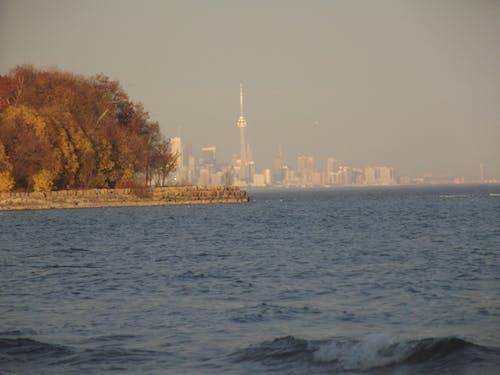 Free stock photo of canada, Lake Ontario, ontario, Toronto