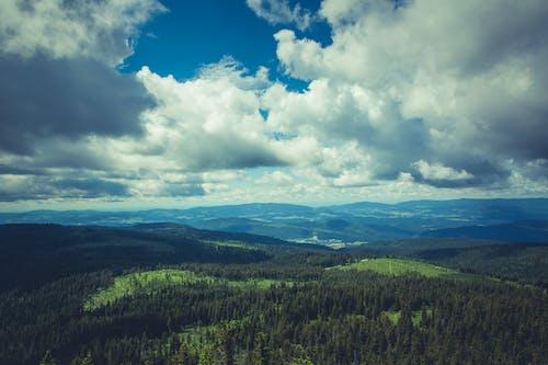 Kostenloses Stock Foto zu bäume, berge, himmel, hochland