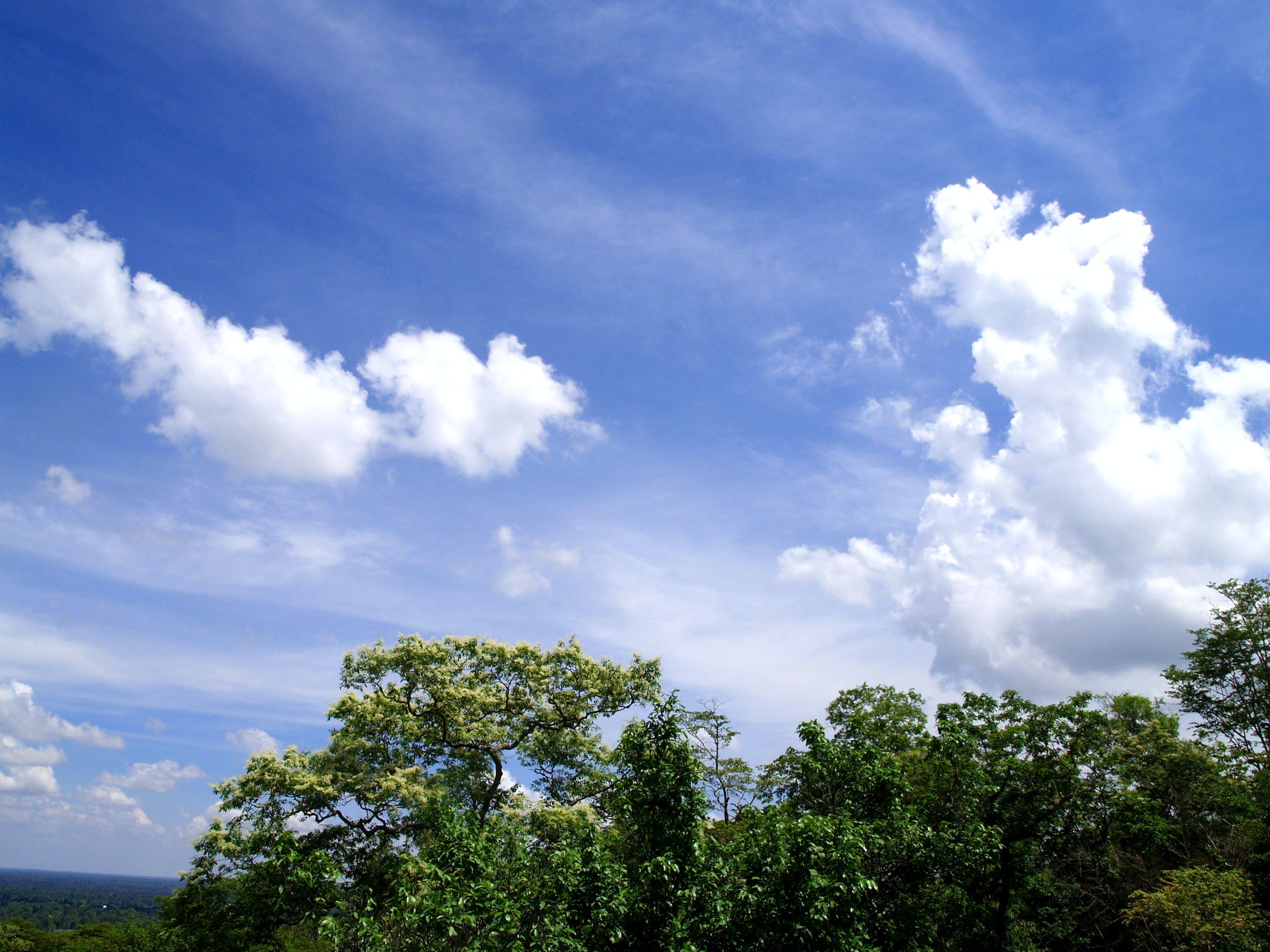 bright, clouds, daylight