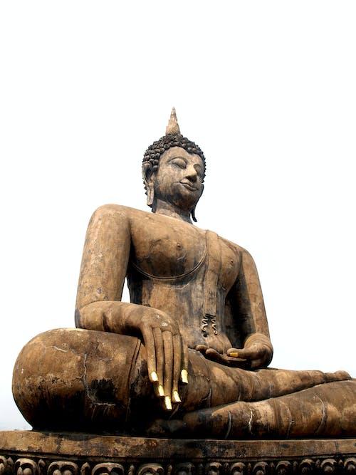 佛, 大城府, 宗教, 寺廟 的 免費圖庫相片