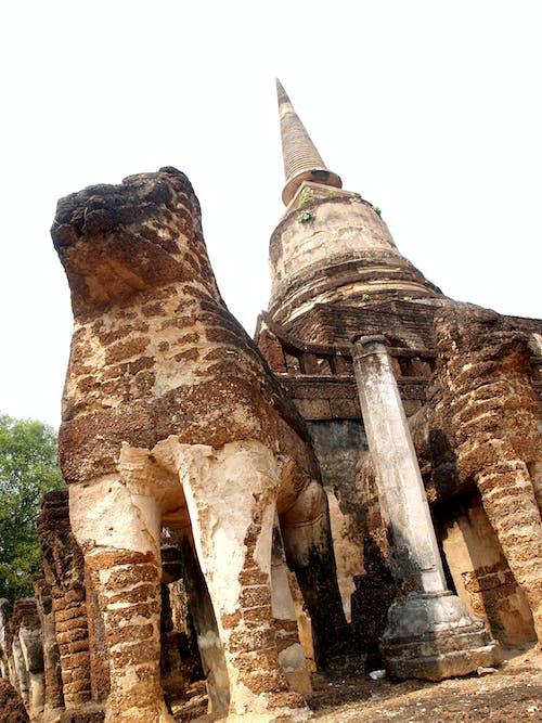 Darmowe zdjęcie z galerii z archeologia, architektura, ayutthaya, azja