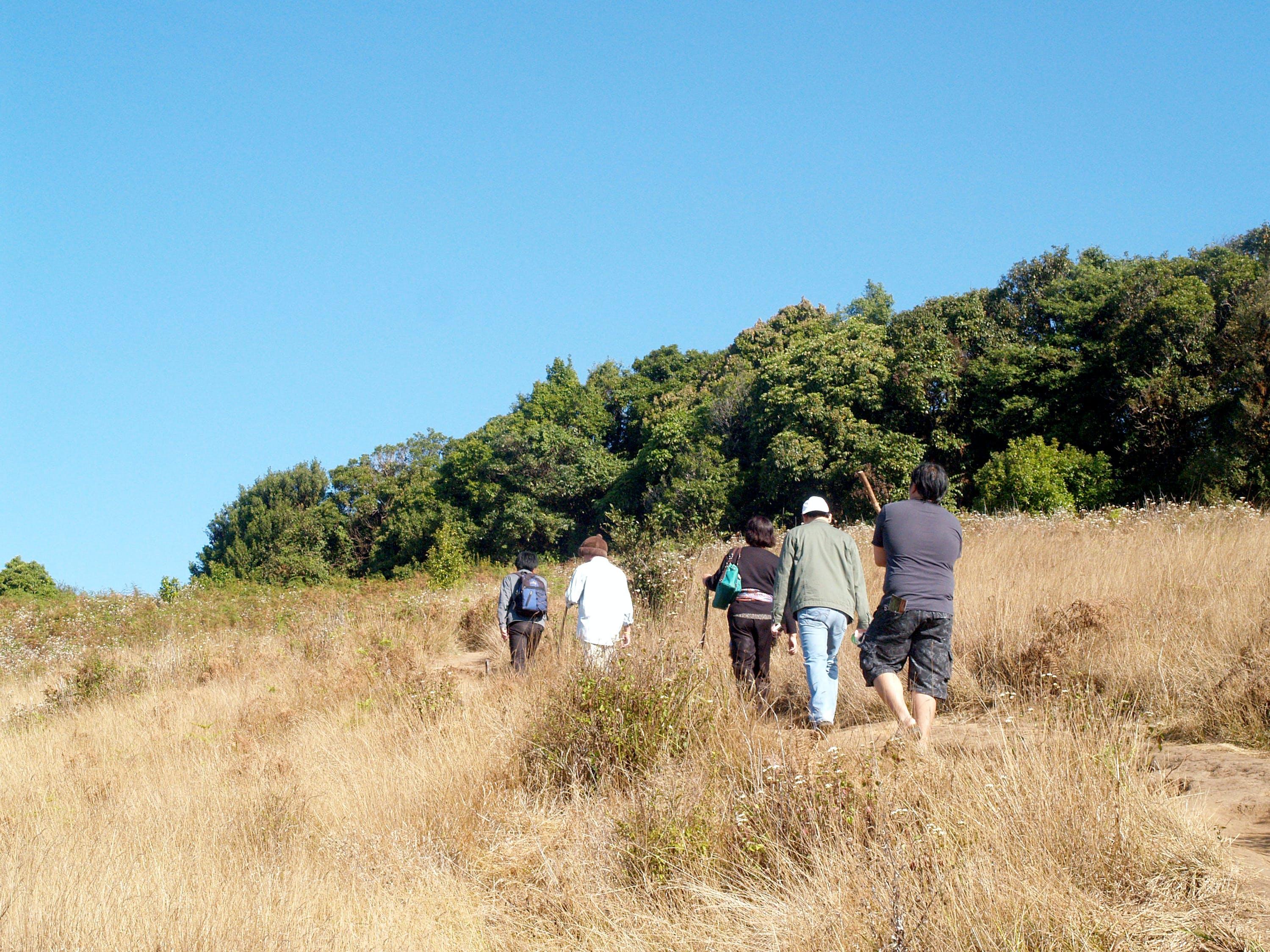 Group of People Walking on Grass Field