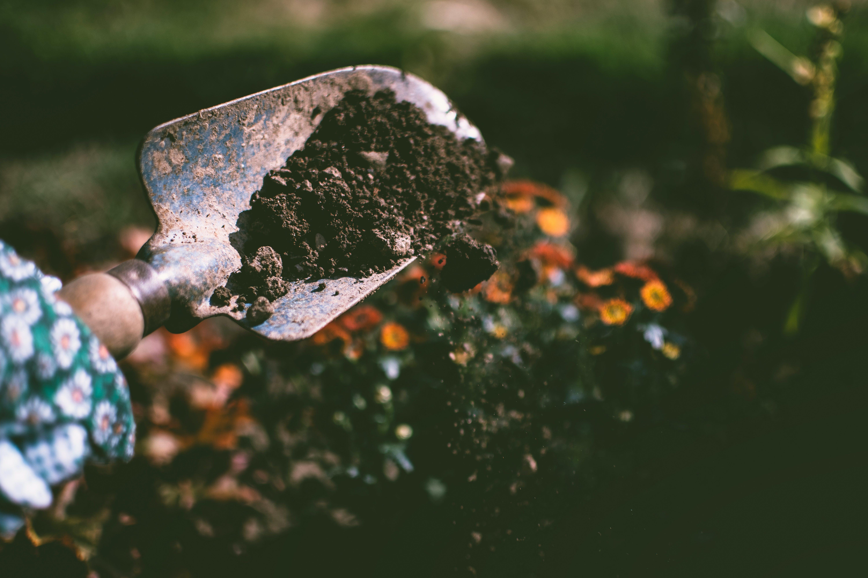 Person Digging on Soil Using Garden Shovel