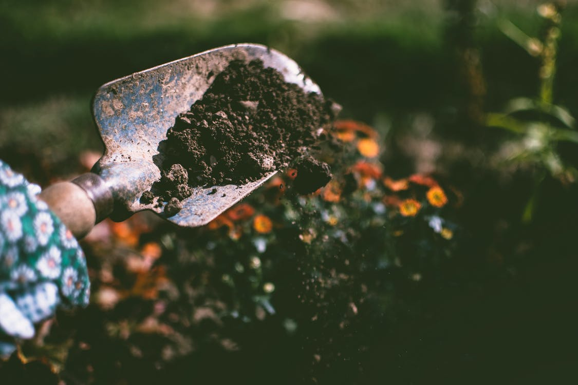 Person Digging on Soil Using Garden Shovel