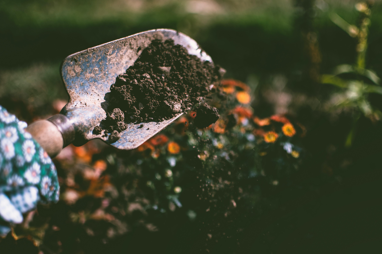 Shoveling through soil for plants.