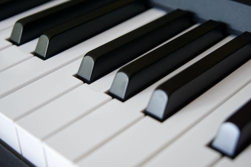 Free stock photo of classical music, keys, music, pianist