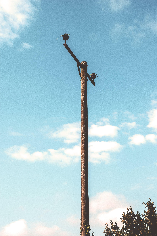 Free stock photo of wood, summer, metal, tree