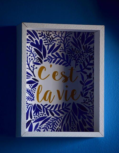 Free stock photo of 4k wallpaper, blue background, blue flowers, c'est la vie