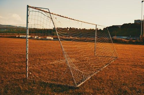 Foto profissional grátis de área, desocupado, fila, futebol