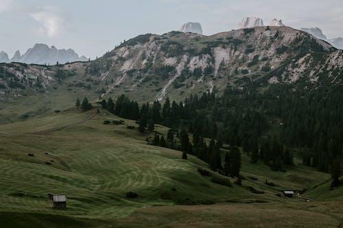 天性, 山, 日光, 景觀 的 免費圖庫相片
