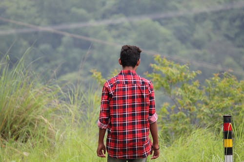 Free stock photo of man, nature lover, nature view