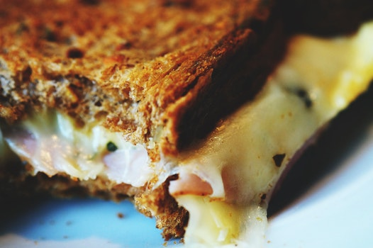 Free stock photo of bread, melting, close-up view, cheese