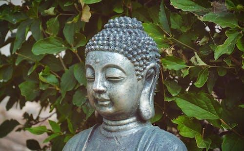 antik, Buda, eski, heykel içeren Ücretsiz stok fotoğraf