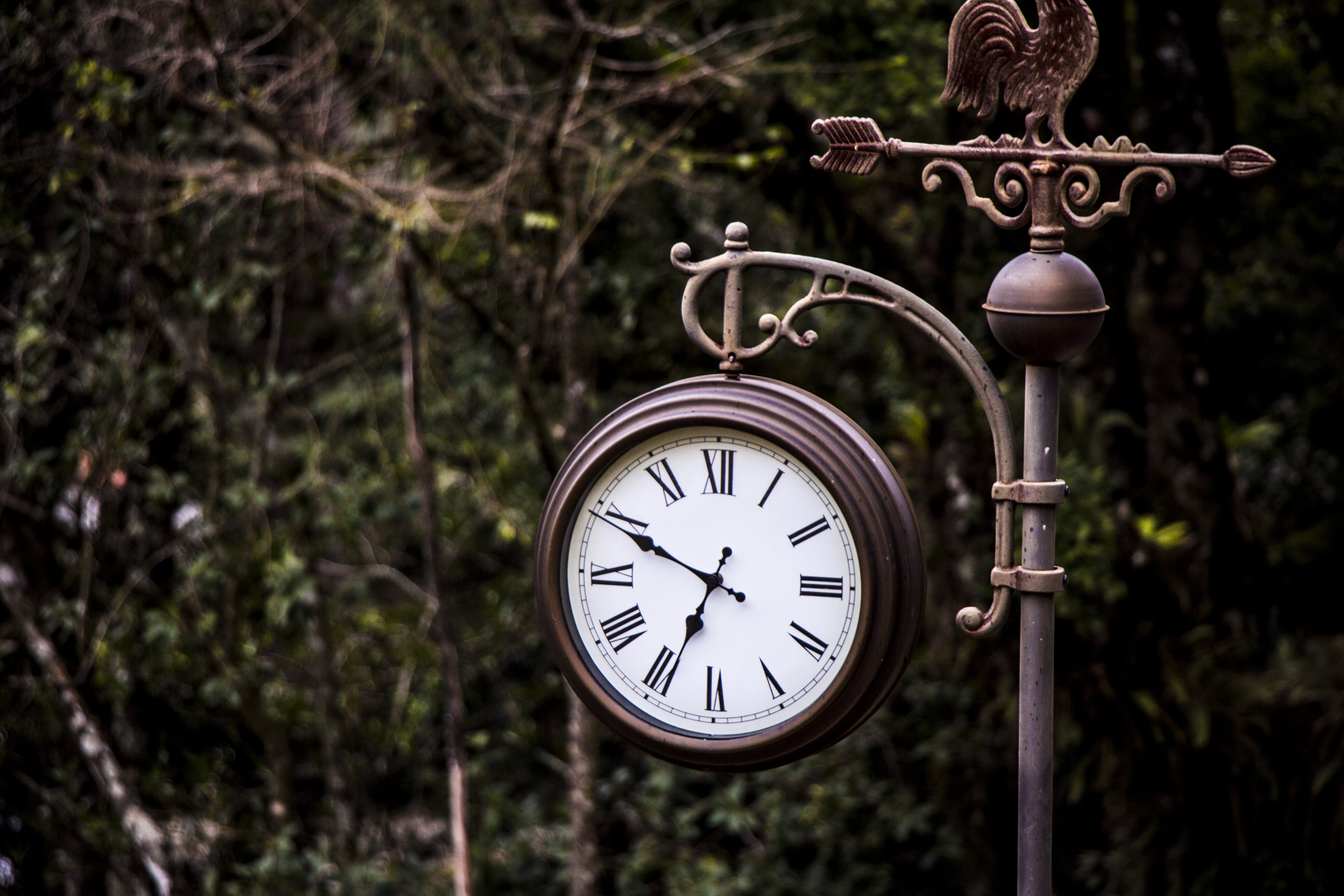 Photography of Clock Displaying time