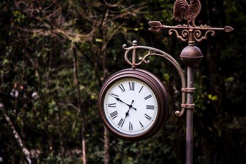 Gratis arkivbilde med antikkur, tid, vintage klokke
