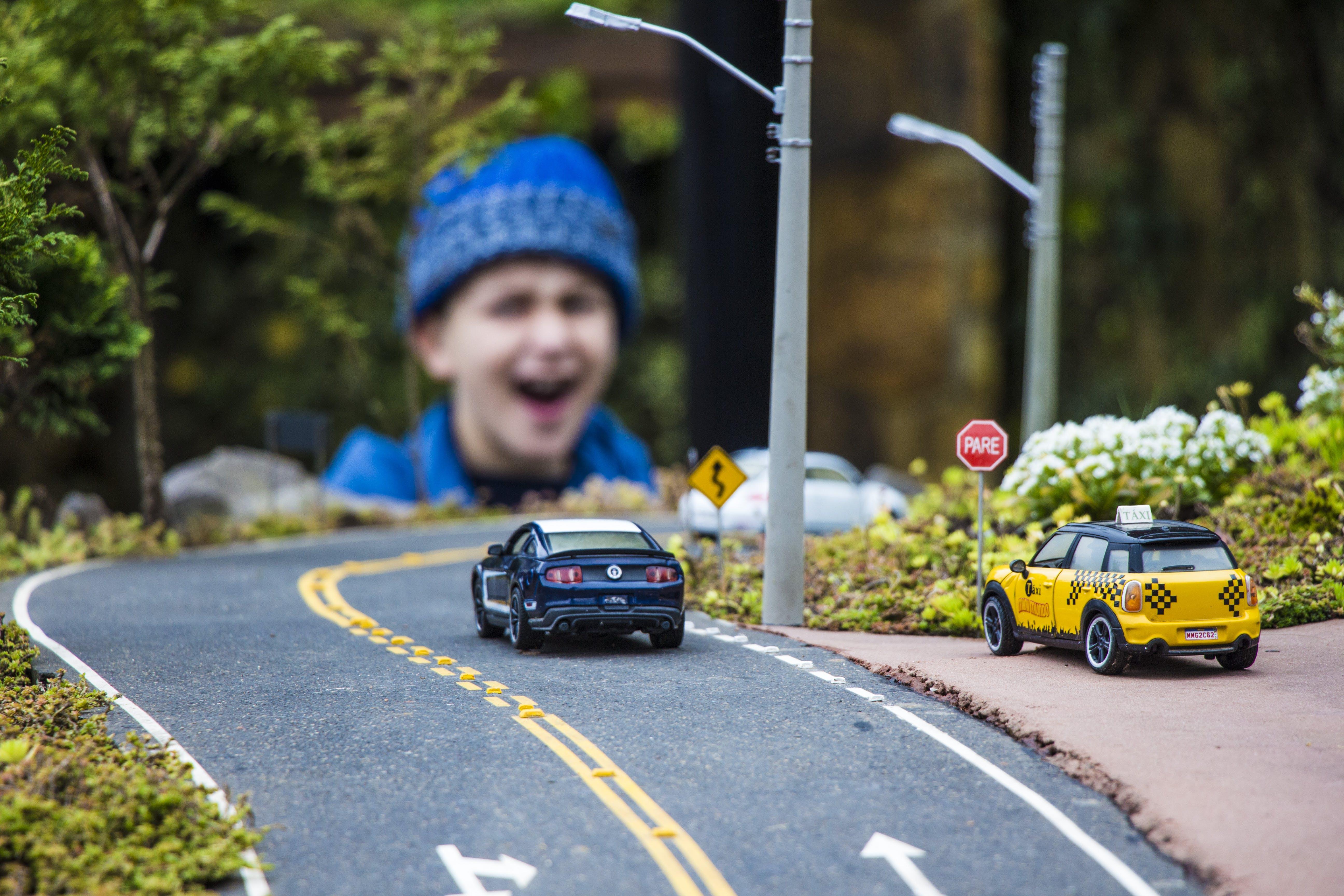 Free stock photo of cab, cars, giant, gramado