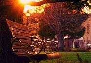 Brown Wooden Bench on Sunset