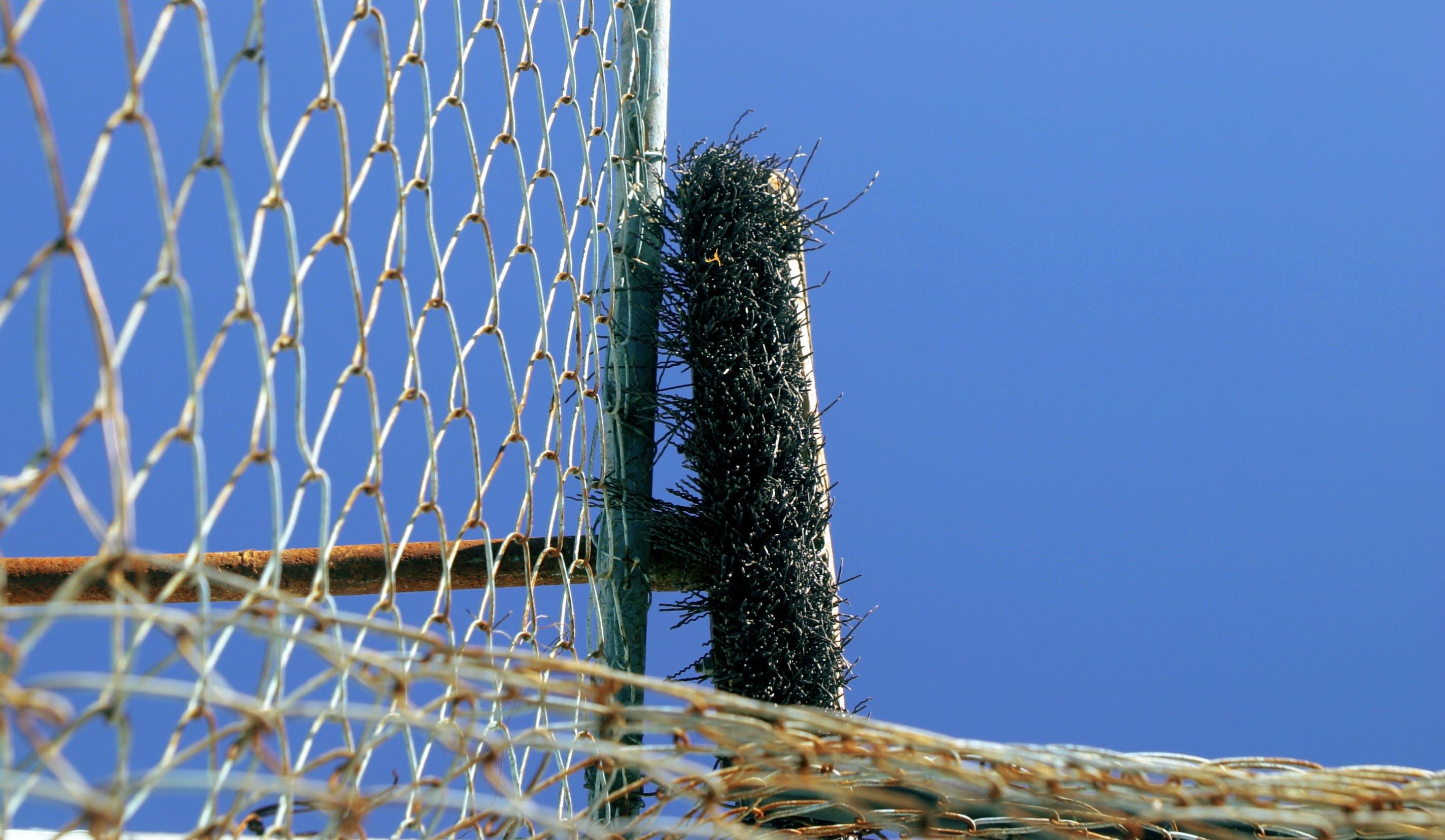 Free stock photo of blue sky, broom, fancy