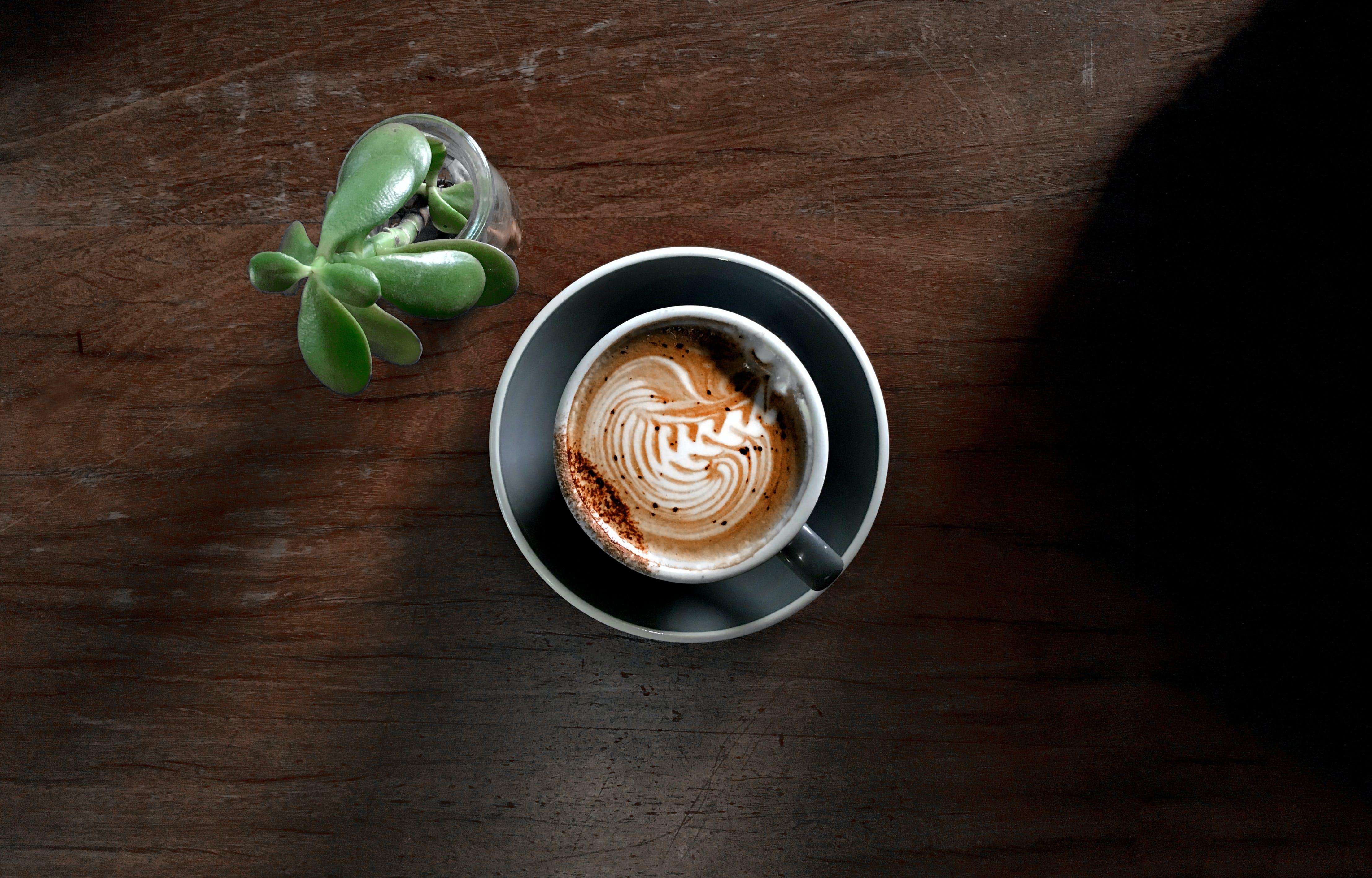 一杯咖啡, 乳液, 卡布奇諾, 咖啡 的 免費圖庫相片