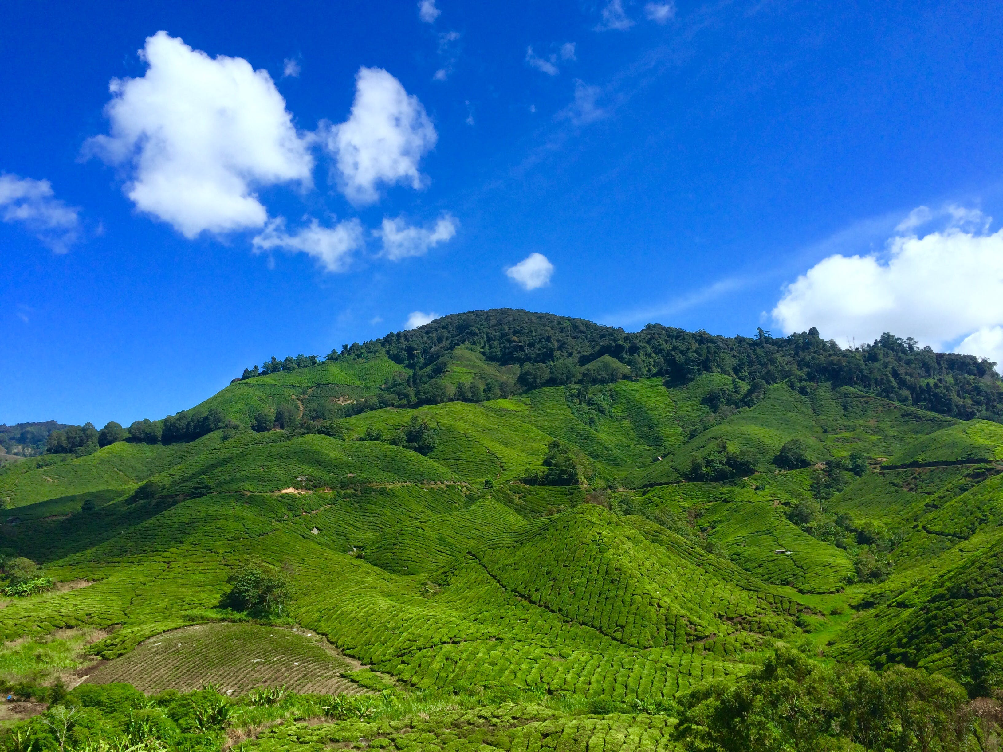 Landscape Photography of Green Hill Under Blue Sky and White Clouds during Daytime