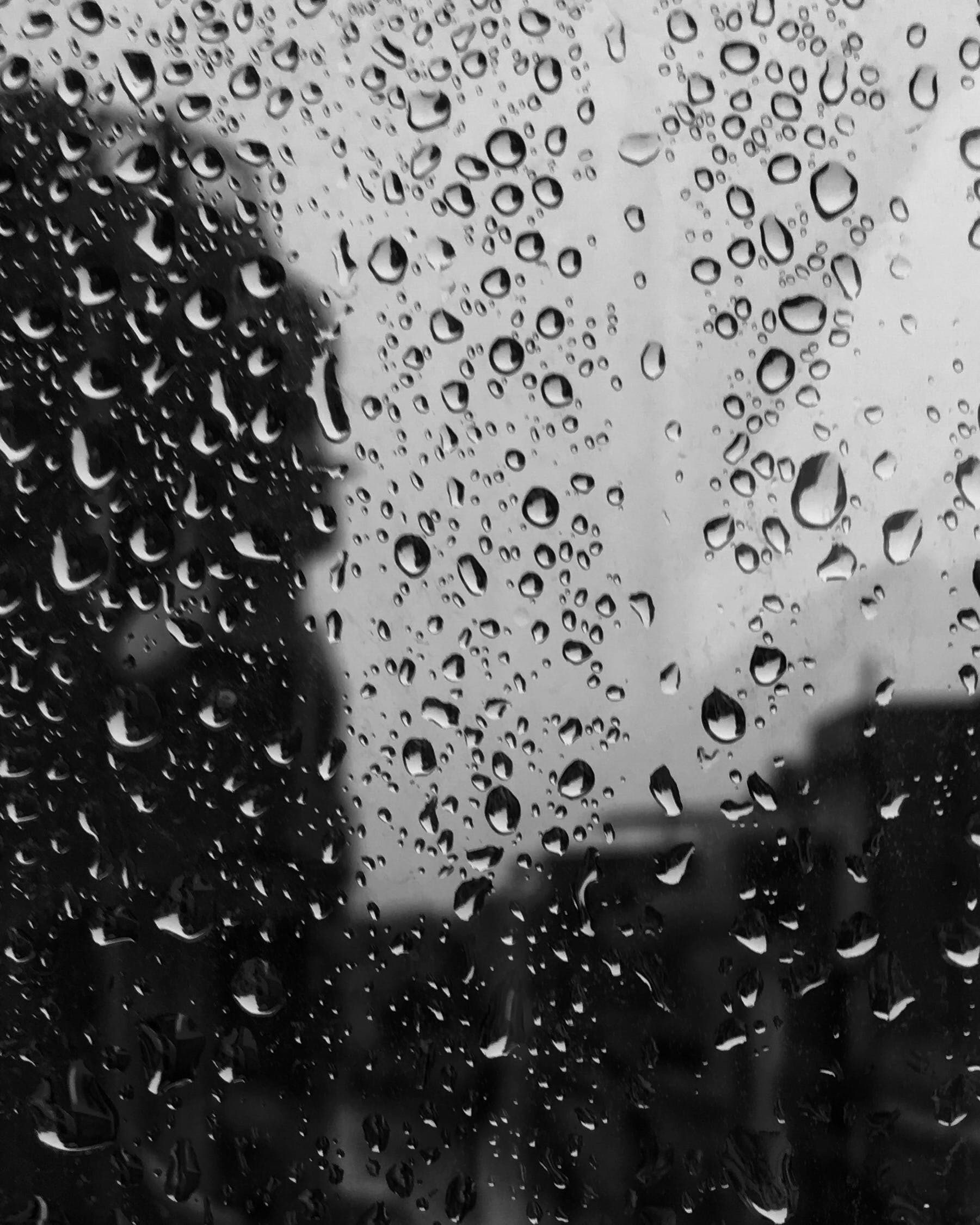 Free stock photo of black and white, rain drops, car window
