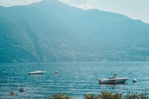 Immagine gratuita di barca, foca, mare, montagna